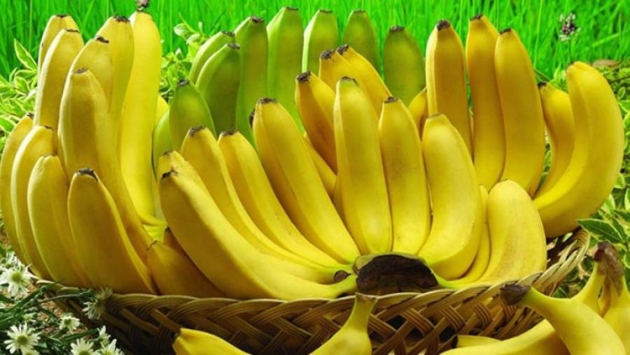 Cameroun : les exportations de la banane ont chuté au premier semestre de l'année 2020