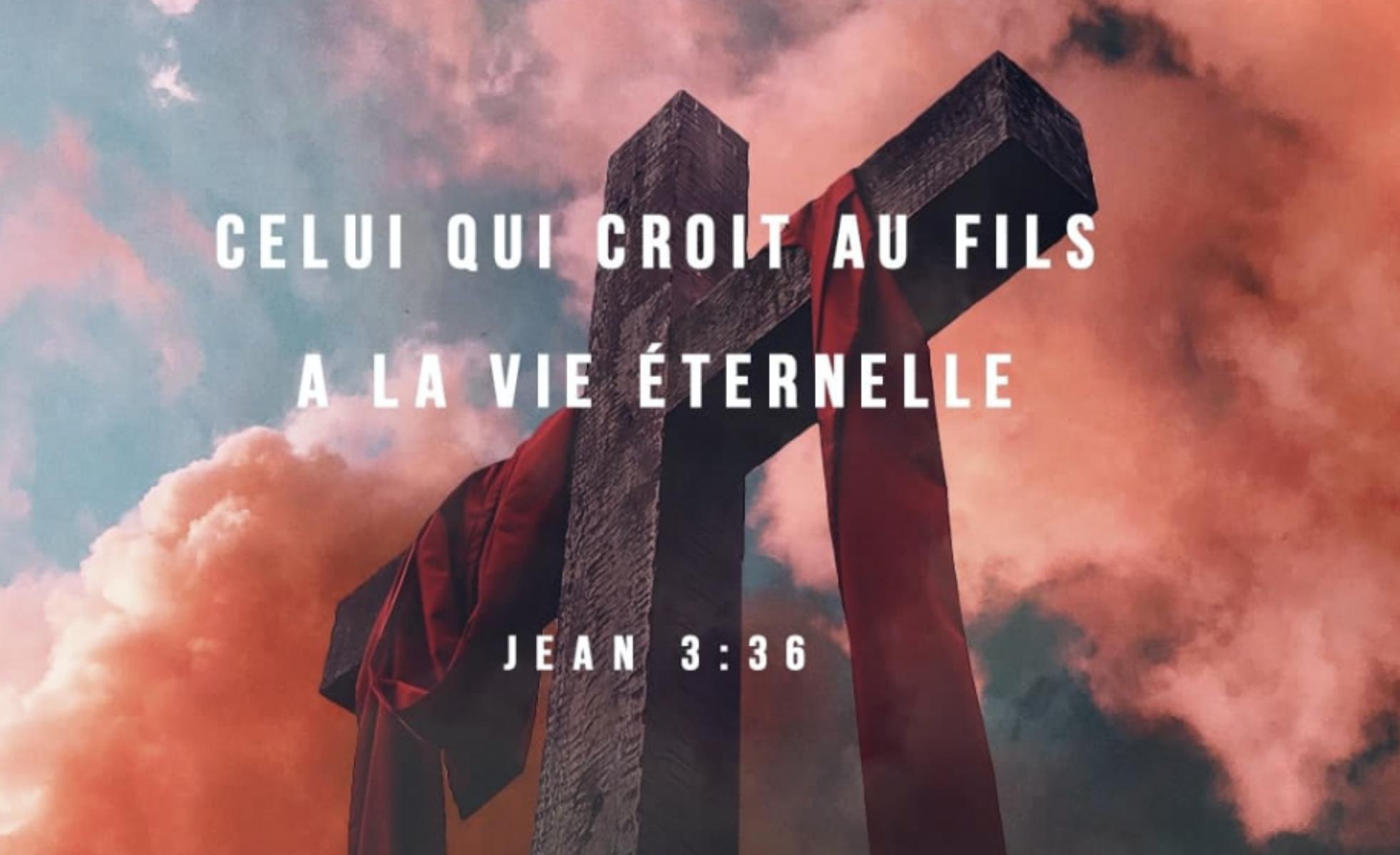 """""""Celui qui croit au Fils a la vie éternelle; celui qui ne croit pas au Fils ne verra point la vie, mais la colère de Dieu demeure sur lui."""" (Jean 3:36)"""