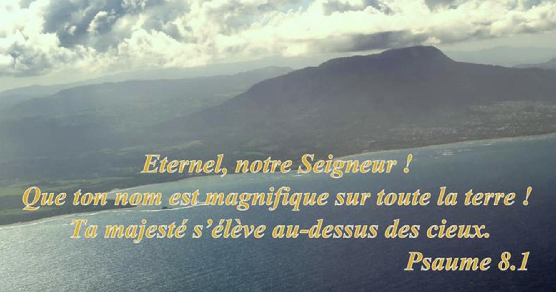 """""""Eternel, notre Seigneur! Que ton nom est magnifique sur toute la terre! Ta majesté s'élève au-dessus des cieux."""" (Psaumes 8:1)"""