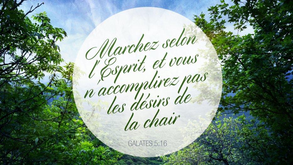 """""""Marchez selon l'Esprit, et vous n'accomplirez pas les désirs de la chair."""" (Galates 5:17)"""