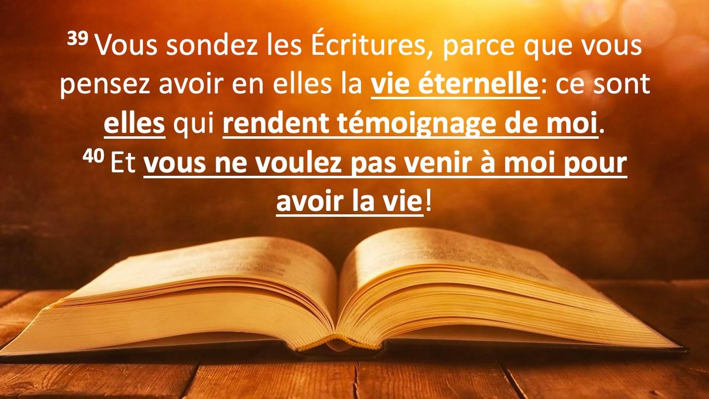 """""""Vous sondez les Ecritures, parce que vous pensez avoir en elles la vie éternelle: ce sont elles qui rendent témoignage de moi."""" (Jean 5:39)"""