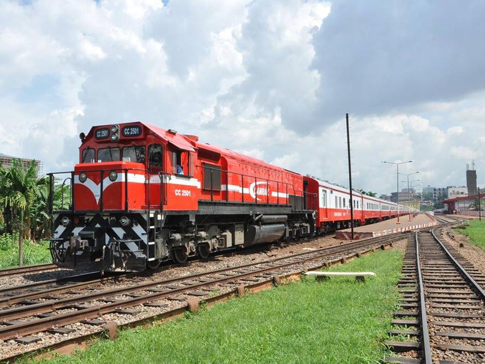 Cameroun : la société ferroviaire Camrail investit 400 millions de FCFA pour renforcer la préservation de l'environnement sur la voie ferrée