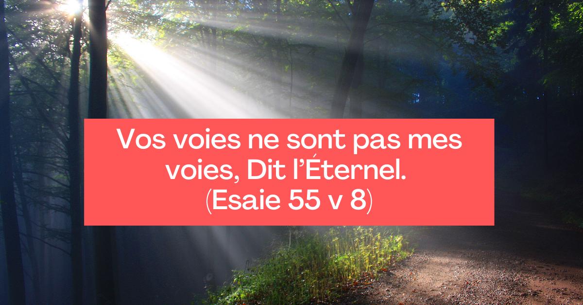 Vos voies ne sont pas mes voies, Dit l'Éternel. (Esaie 55 v 8)