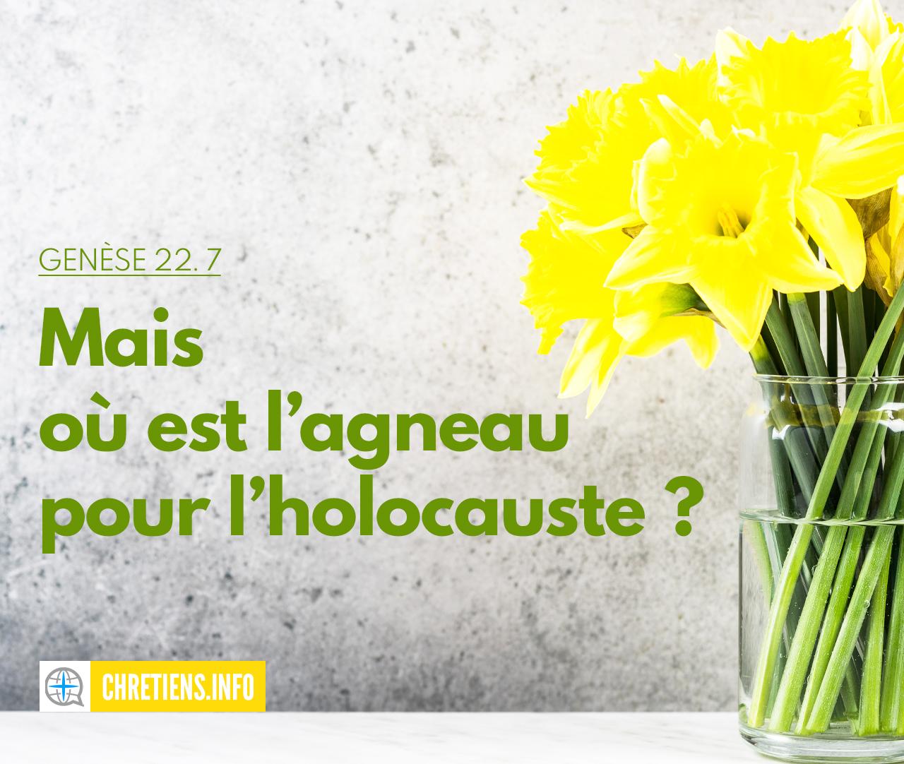 Où est l'agneau pour l'holocauste ? Genèse 22:7