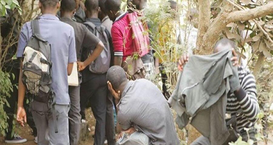 Cameroun : des élèves interpellés avec drogue et armes blanches dans certains lycées de Yaoundé