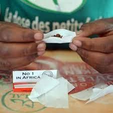 Cameroun : la mairie de Douala lance une campagne de sensibilisation contre la consommation des stupéfiants dans les établissements scolaires de la ville