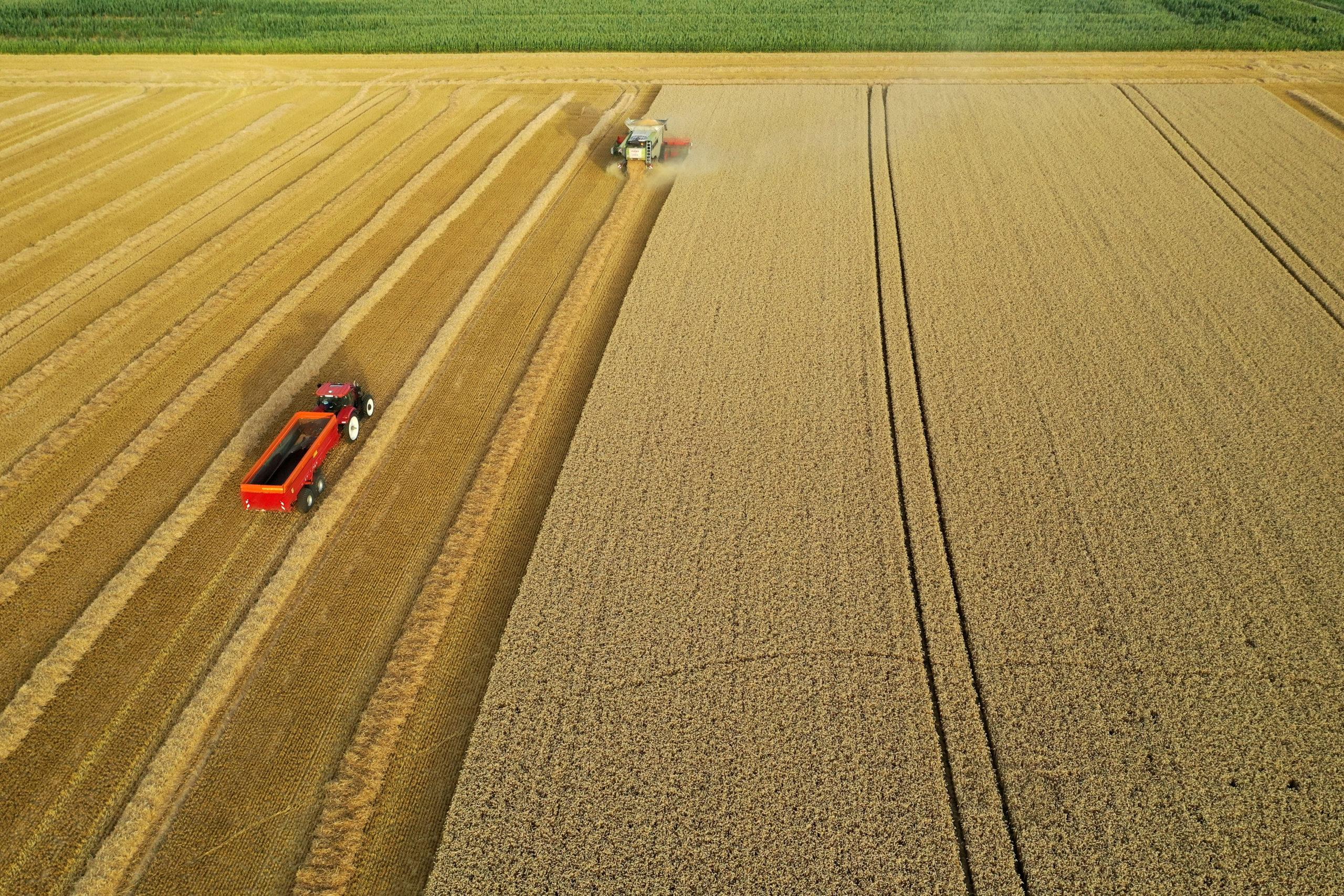 Des milliers d'agriculteurs français gravement menacés par la chute des rendements