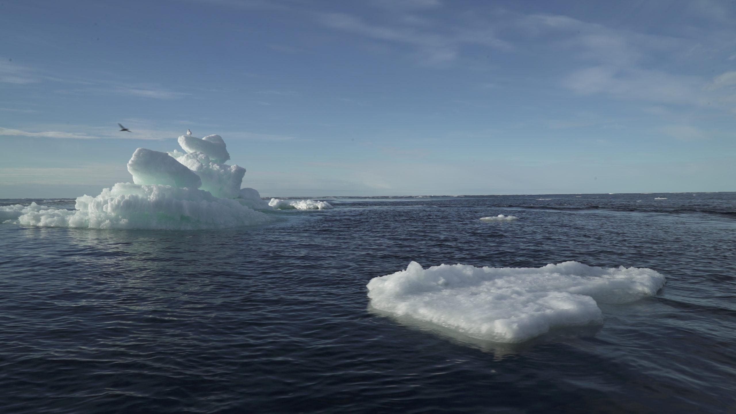 La banquise arctique a atteint sa deuxième superficie la plus faible